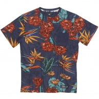 element-chester-boy-tee-shirt-all-over-kids